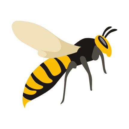 Kammerjäger Schädlingsbekämpfung Frankfurt für Wespen und Schaben